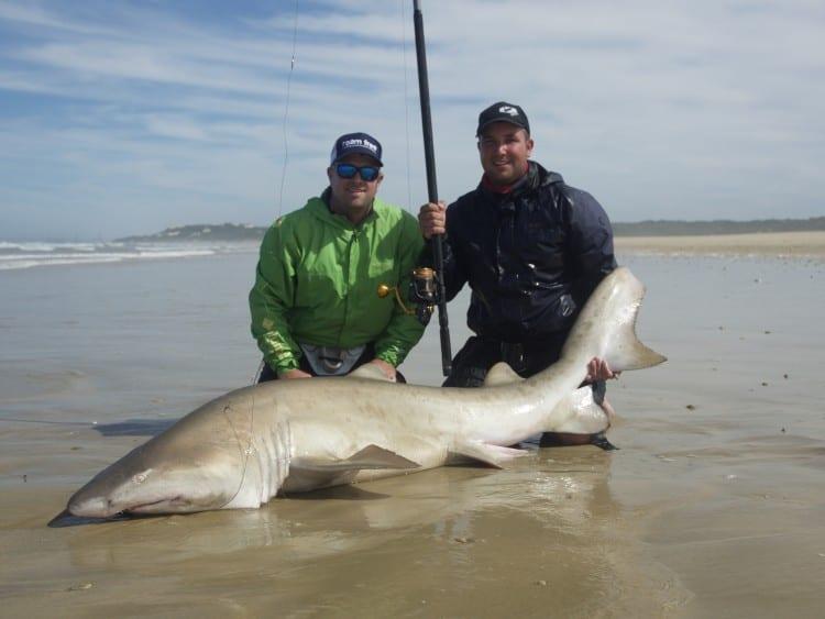 1 x Big shark! #whywefishanddon'tsurf _1230527