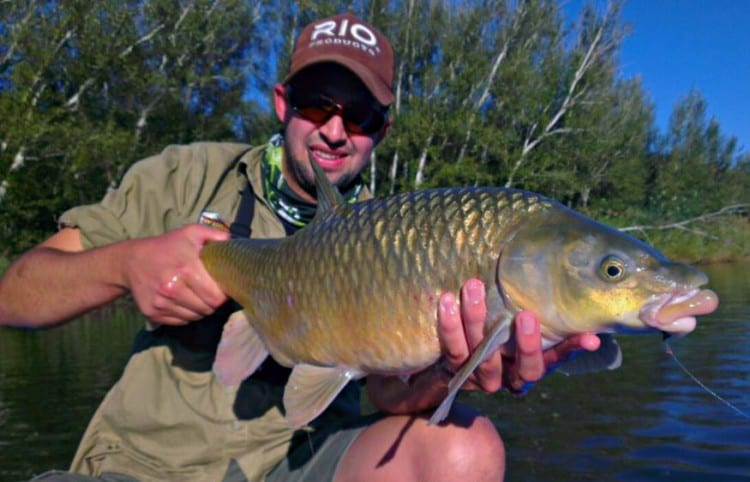 Vaal producing some good sized small mouths! Vaal April SM