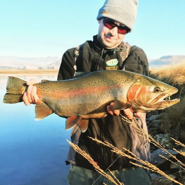 Trophy Rainbow from the Kamberg waters.