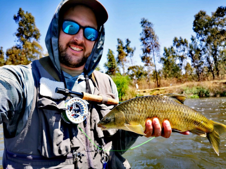 My favorite targeted species on fly. Got to love the smallies in the Vaal River