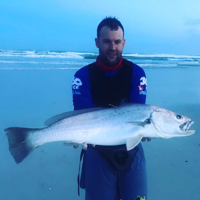 89cm Cob on livebait. Tagged and released