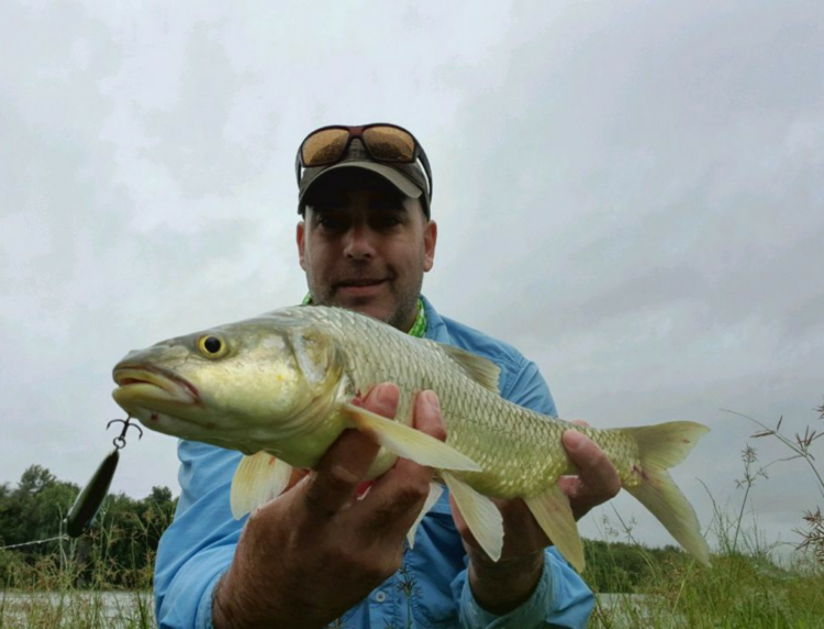 Orange River Largie on lure